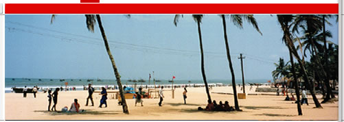 Goa trip, Goa Holiday Trips, Goa Honeymoon Trip